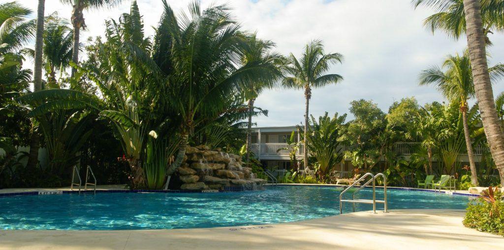 piscina de forma libre